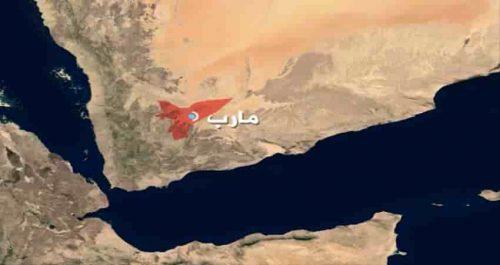 الجيش: خسائر بشرية مروعة للمليشياالحوثية في مأرب